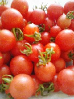 ちいさいトマト